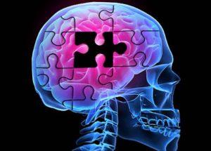 BMI1 Gene Dysfunction Is Linked To Alzheimer's Disease Development