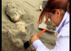 Hepatitis B Virus Has Been Sampled From Humans Remnants Of 4,500-Year-Old