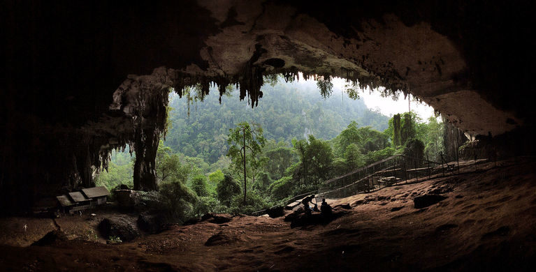 A 30,000-Year-Old Jawbone Found In Niah Cave, Southeast Asia, Revealed Ancient Humans' Dietary Habits
