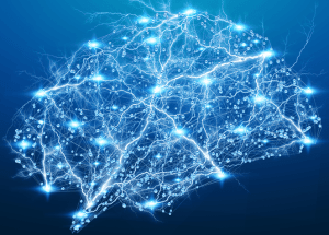 Serotonin Accelerates Learning Processes, A New Study On Lab Mice Revealed
