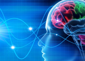 Brain Games Have No Beneficial Effect For Memory And Cognitive Function, A New Study Reveals