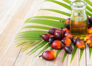"""Palm Oil Linked To High """"Bad Cholesterol"""" Levels And Cancer, According To Latest Studies"""