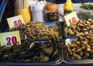 A New Clinical Test Shows That Consuming Insects Can Be Good for Your Gut