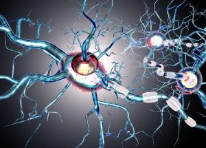 New Therapy For Relapsing-Remitting Multiple Sclerosis (RRMS) Developed by Merck Pharmaceuticals