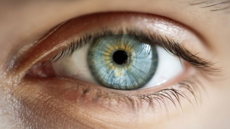 World Sight Day 2018: WHO Warns About The Importance Of Asymptomatic Pathologies That Affect The Visual Health