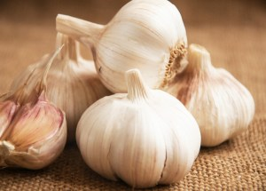 Garlic Could Treat Lyme Disease, A Recent Study Finds