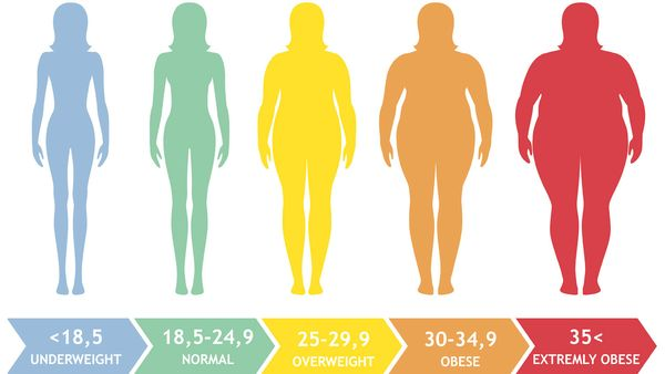 Obesity raises the risk of early death by up to 50%