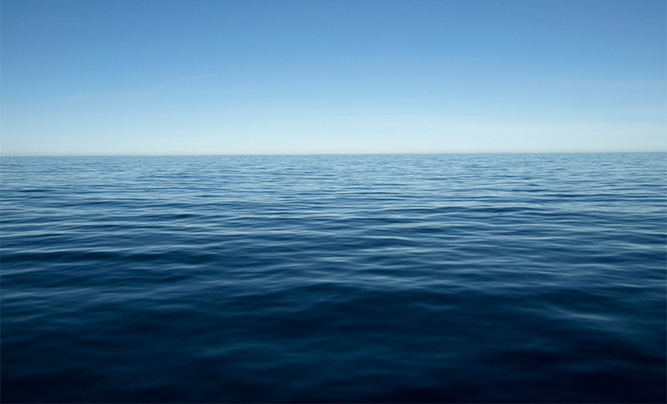 The Pacific Ocean is home to some Arsenic-Breathing Microbial Life