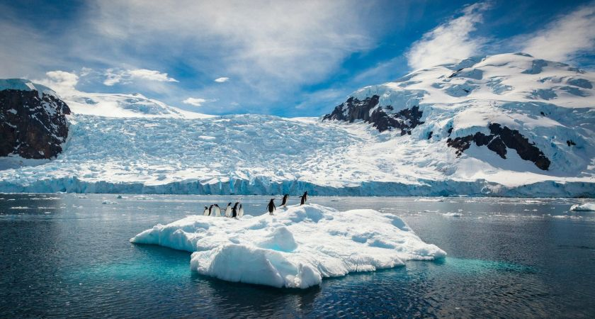Artificial Snow Might Save Antarctica From Global Warming