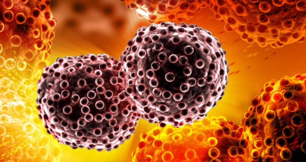 Cancer Cells Turned Into Fat To Stop Cancer Development