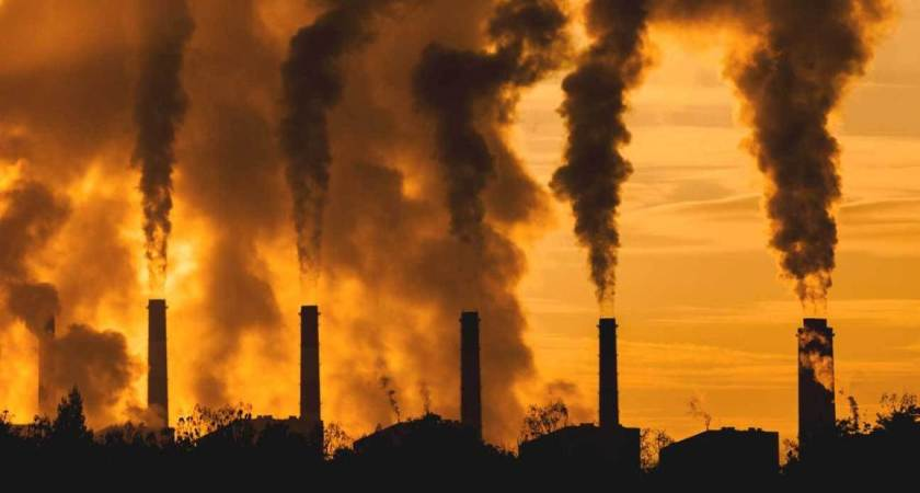 Air Pollution Can Reach The Placenta During Pregnancy, Affecting The Fetus