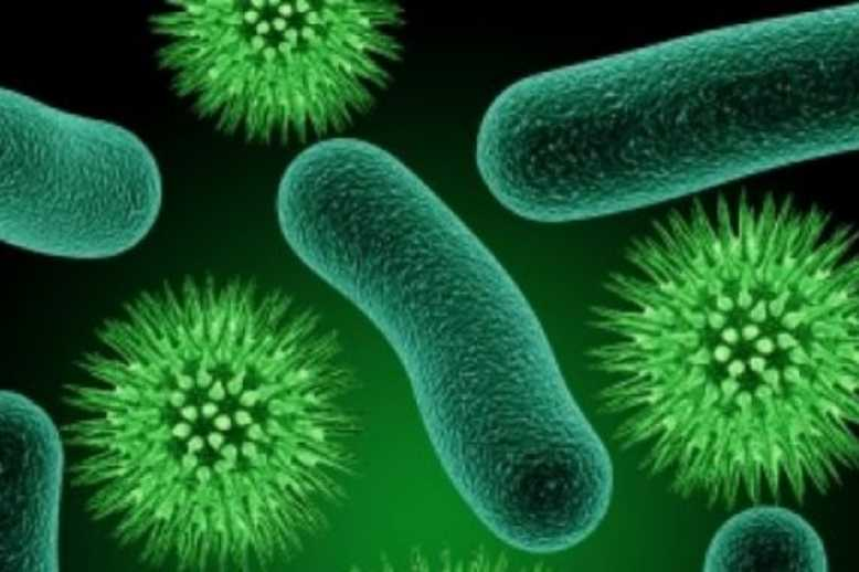 Peptides Might Help Us Fight Superbugs