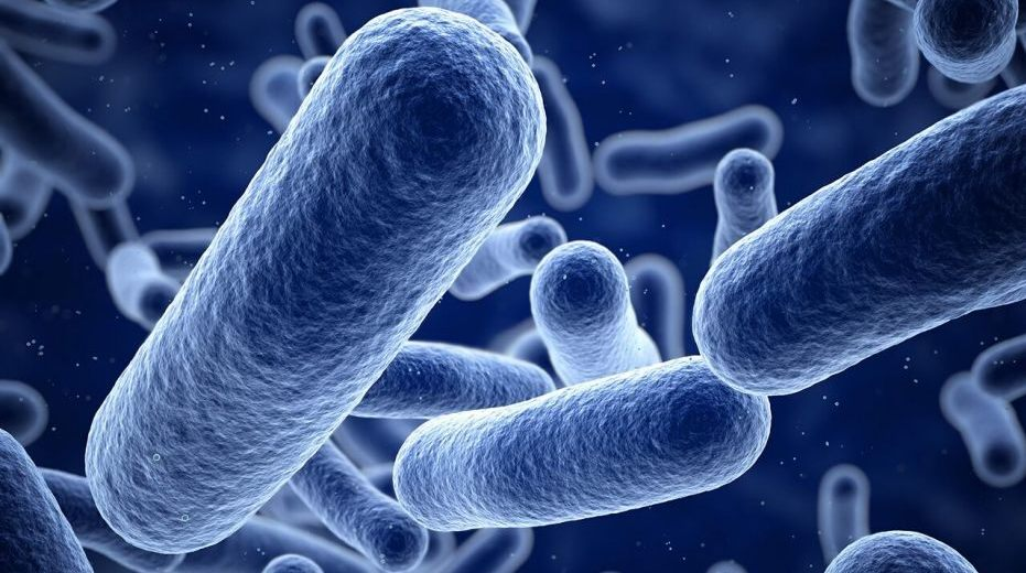 Scientists Identified a New Deadly Superbug