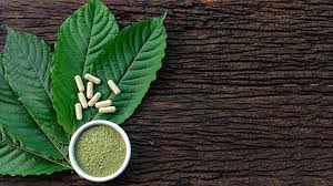 All Things Kratom – What to Expect From This Herb