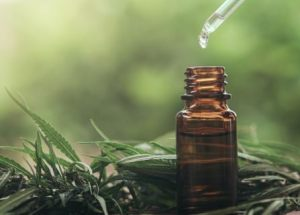 CBD Knowledge: What CBD Products Should You Consider?