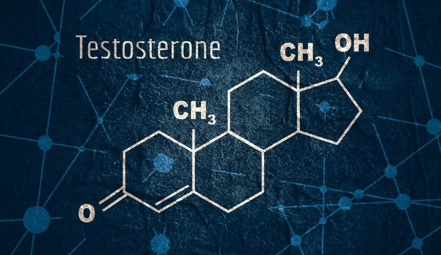Top Testosterone Booster Supplements You Should Consider Today