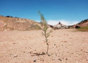Megadrought To Hit North America, New Research Showed