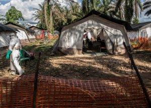 New Virus Disease Strikes: Ebola Outbreak Detected!
