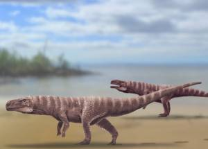 Bipedal Crocodile Ancestors Uncovered