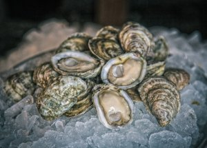 Supplemented Shellfish as a Great Source of Vitamins