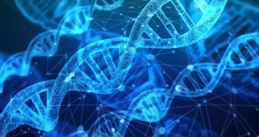 Researchers Discovered New Transposon-Derived Genes Related To Autism And Similar Diseases