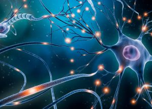 Patients With Schizophrenia Show Unique Differences in Neurons