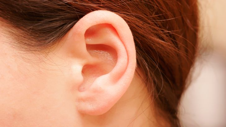 WHO Warns 1 in 5 People Face Hearing Problems by 2050