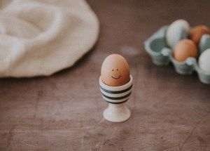 Top 3 Questions about Using Donor Eggs — Answered