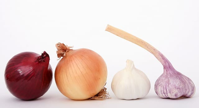 benefits of garlic and onion juice for hair