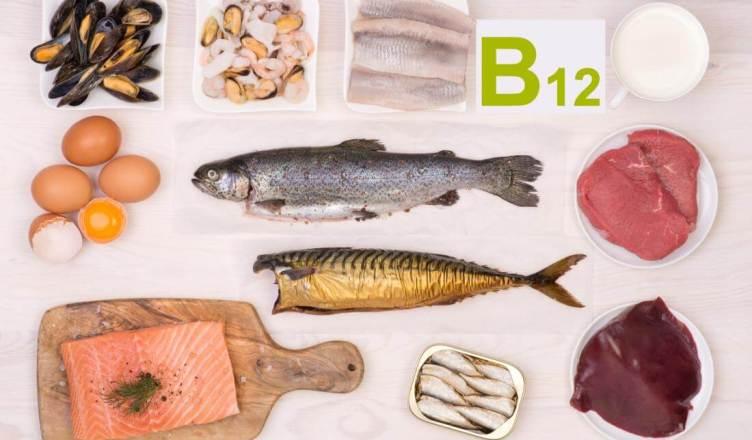 vitamin b12 sources in hindi