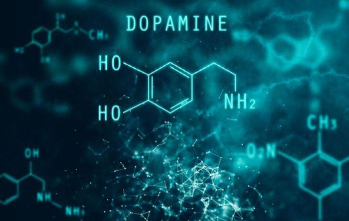 dopamine-harmone