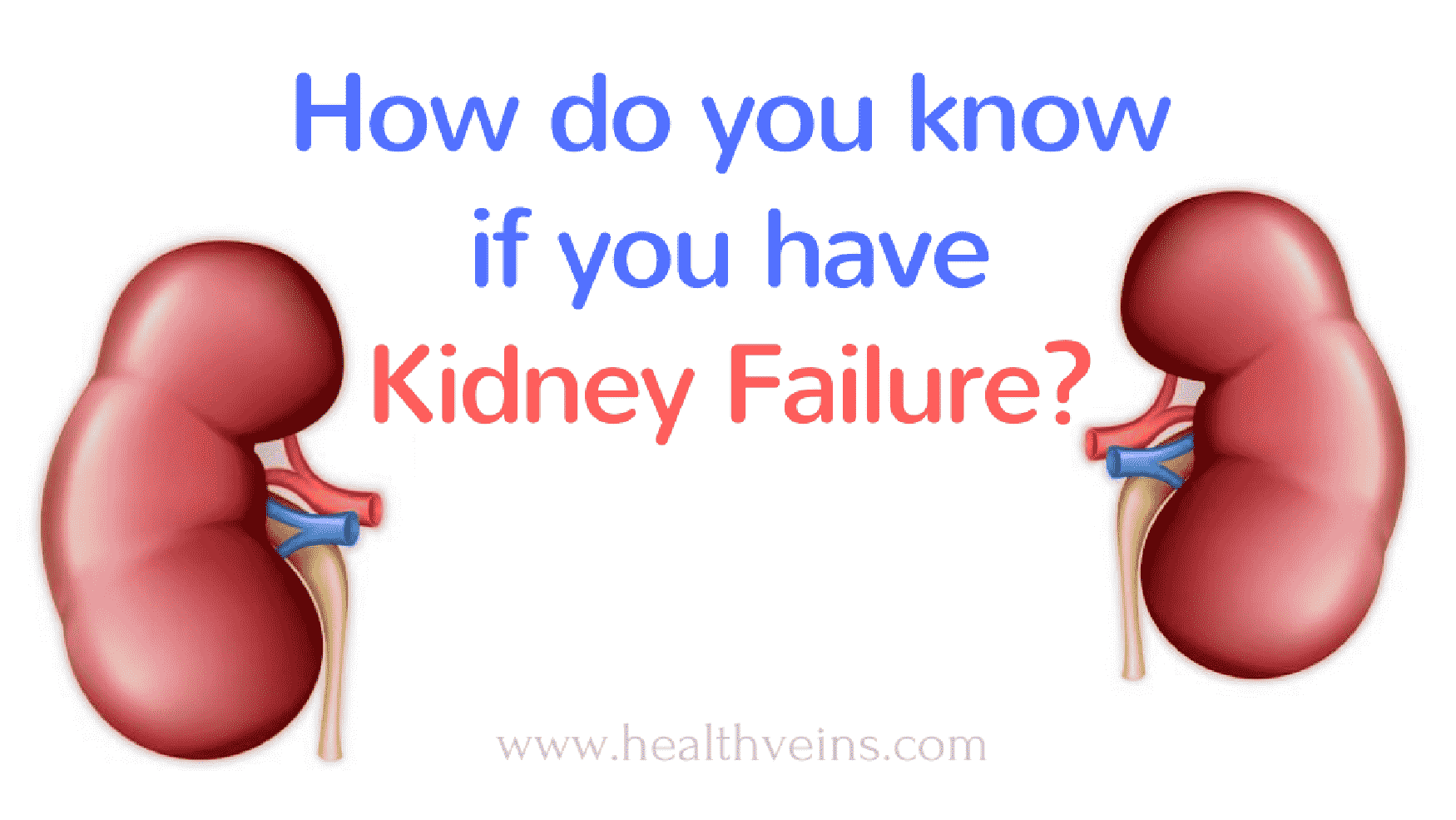 How do you know if you have kidney failure? - Healthveins - photo#12