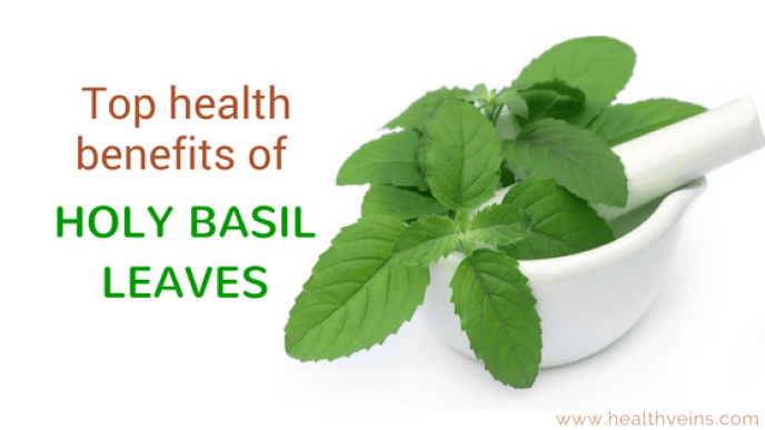 Top health benefits of holy basil leaves