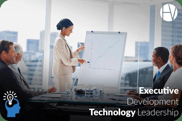 Executive Development: Technology Leadership