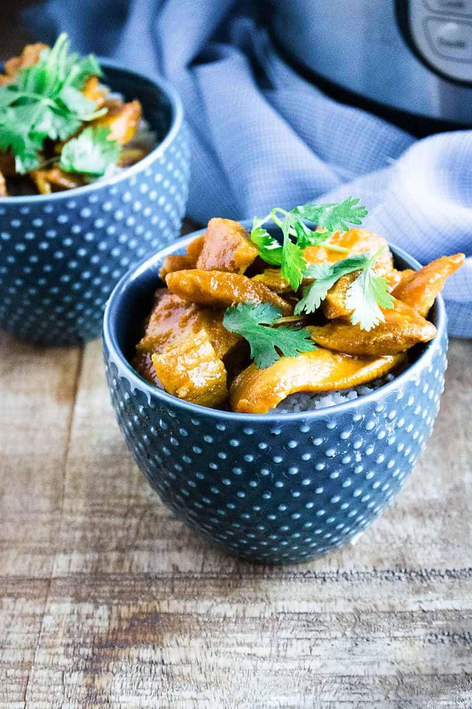 Instant Pot Chicken Curry (Whole 30, Paleo, Gluten Free ...