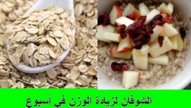 Photo of فوائد الشوفان لزياده الوزن وطريقه تحضيره