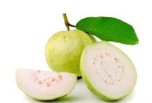 Photo of فوائد الجوافة في الطب البديل