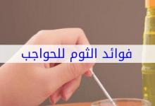Photo of فوائد الثوم للحواجب