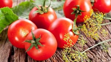 Photo of فوائد الطماطم للبشرة