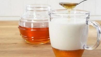 Photo of فوائد الحليب مع العسل
