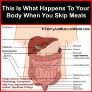 This Is What Happens To Your Body When You Skip Meals