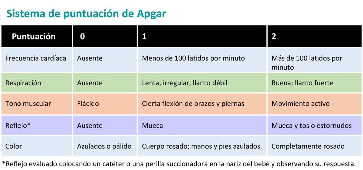 La prueba de Apgar del recién nacido - HealthyChildren.org