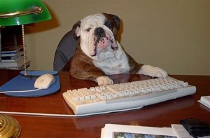 dogfatherAtComputer - Error 404