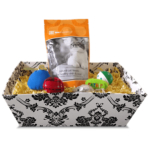 Tasty Treats and Toys Cat Gift Basket