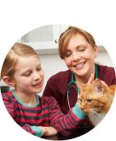 LumaPet with vet and healthy cat