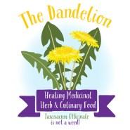 Dandelions a beneficial super plant!