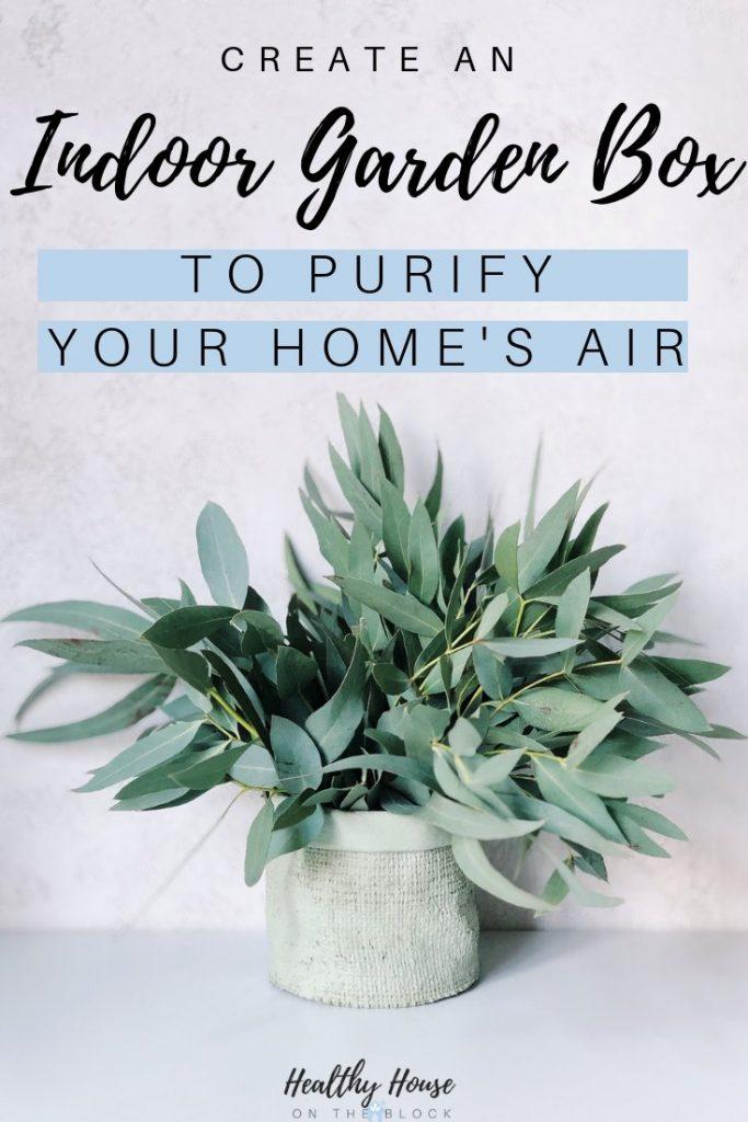 indoor garden box to improve indoor air quality