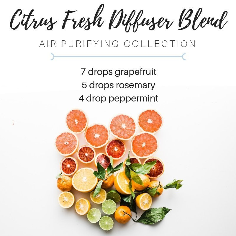 citrus fresh diffuser blend with grapefruit essential oil, rosemary essential oil, peppermint essential oil