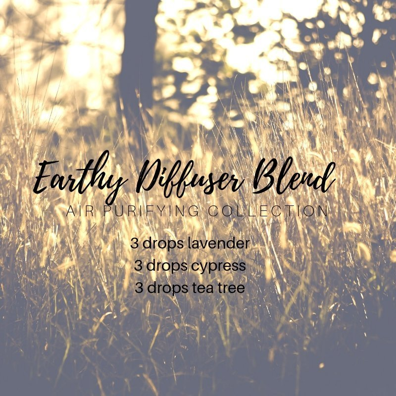 air purifying diffuser blend with lavender essential oil, cypress essential oil, tea tree essential oil