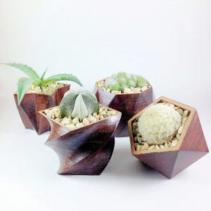 3D Printed wood geometric small plant pots. Modern organic decor